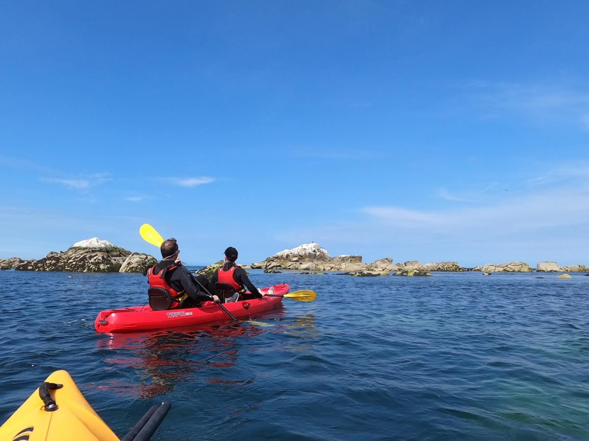 Unique Outdoor Activities For Students In Dublin This Summer
